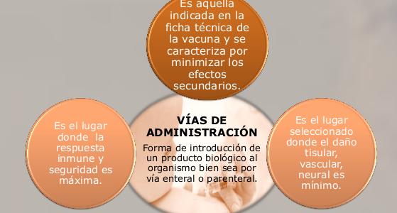 AVANCES EN LAS VÍAS DE ADMINISTRACIÓN DE LAS VACUNAS