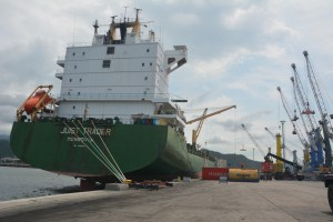 82 contenedores con pañales, medicamentos y alimentos arribaron a Puerto Cabello
