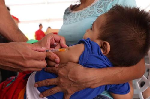 Cerca de 90% de niños entre 6 meses a 15 años están vacunados en Plaza y Zamora