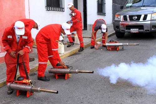 Fumigarán parroquias valencianas para combatir enfermedades endémicas