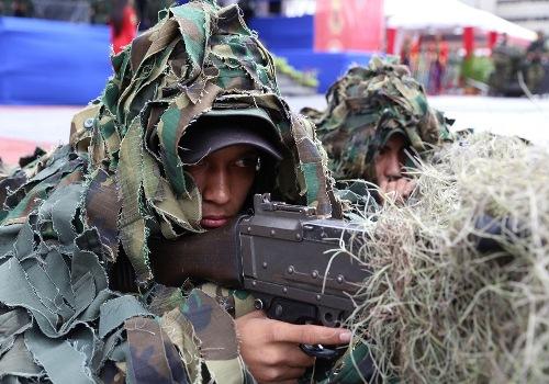 Día del Soldado Venezolano